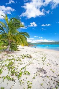 Island days
