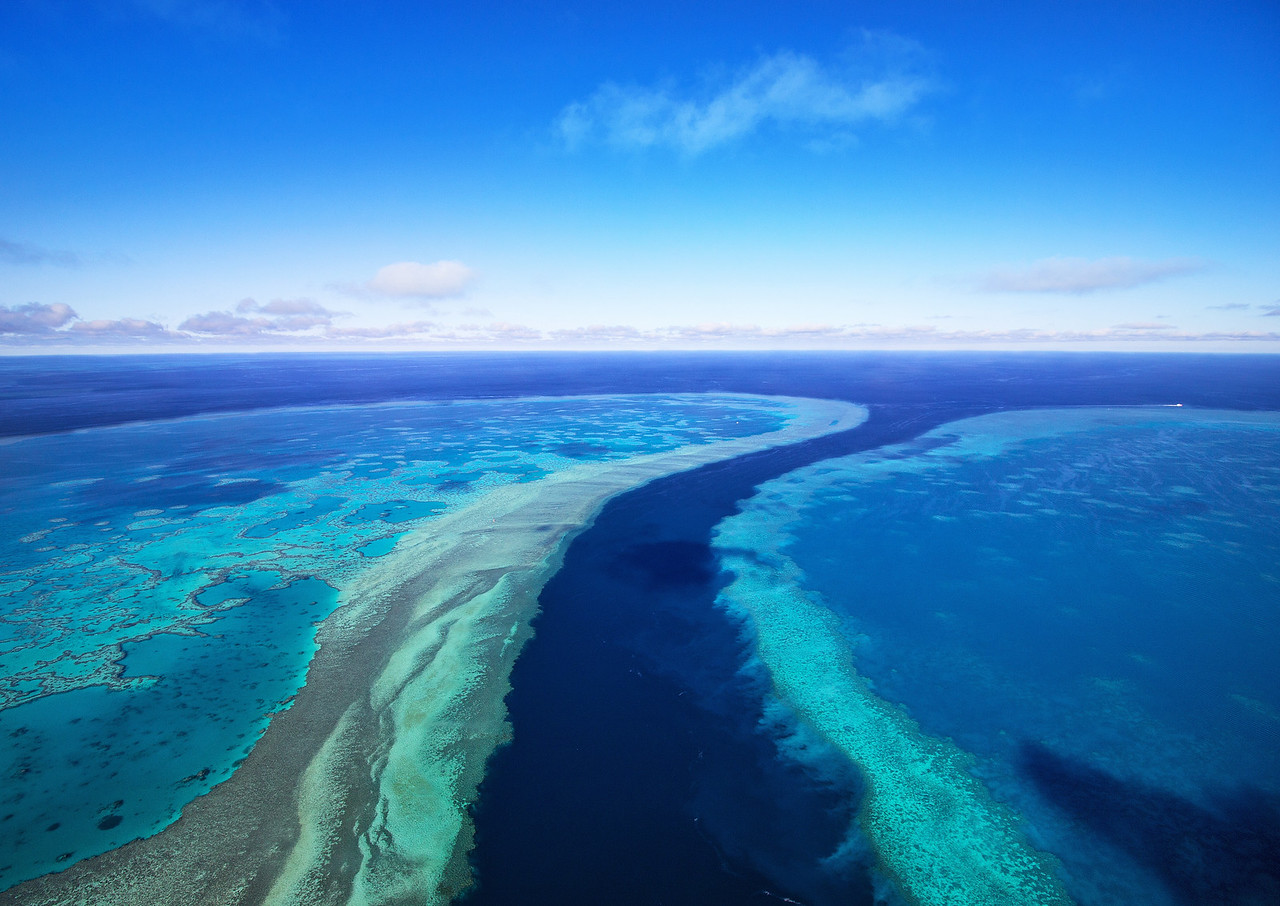 The River - Great Barrier Reef