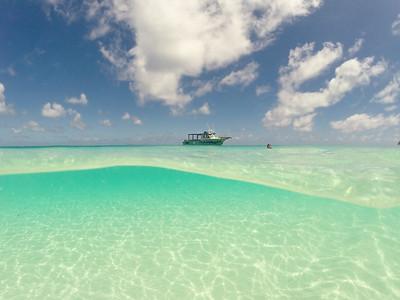 Wilson Island 6