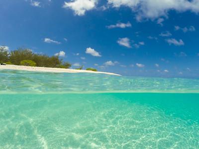 Wilson Island 5
