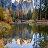 Reflections of Fall, Cathedral Rocks, Yosemite National Park