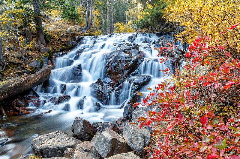 Autumn in Lee Vining Creek