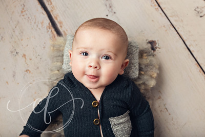 Baby 3-5 Month Photoshoot
