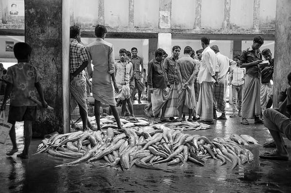 Fish market, Cox Bazar