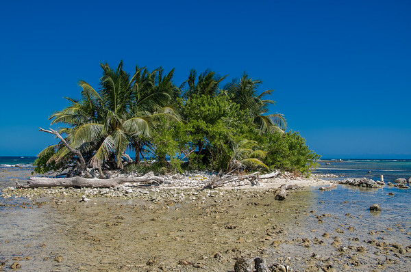 Caye in low tide