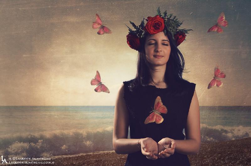 +.Butterflies.+