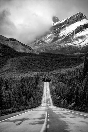 Lone Road