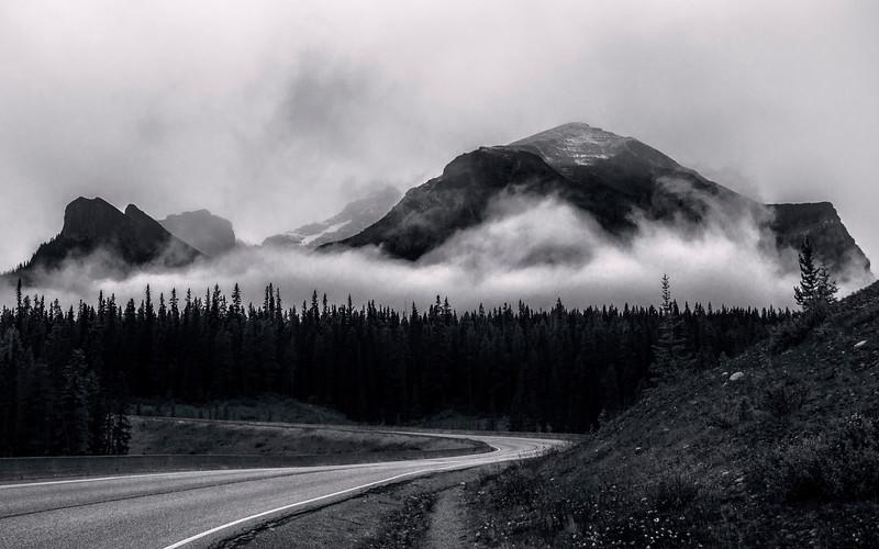 Wandering Road