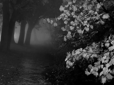 A Haunted Path