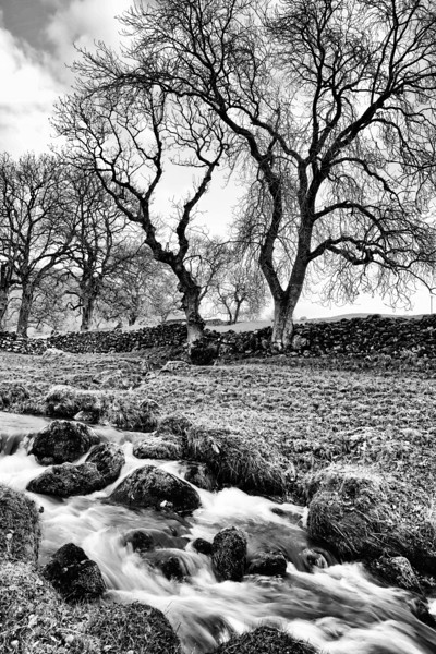 Gordale Beck near Malham, Yorkshire.