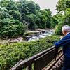 Aysgarth Falls, Yorkshire