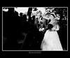 Spotlight Bride