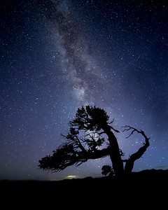 Twisty Milky Way