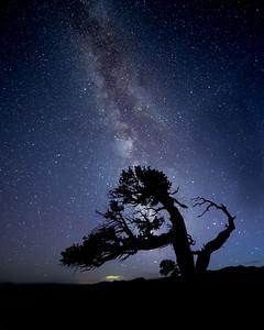 Twisty Milky Way