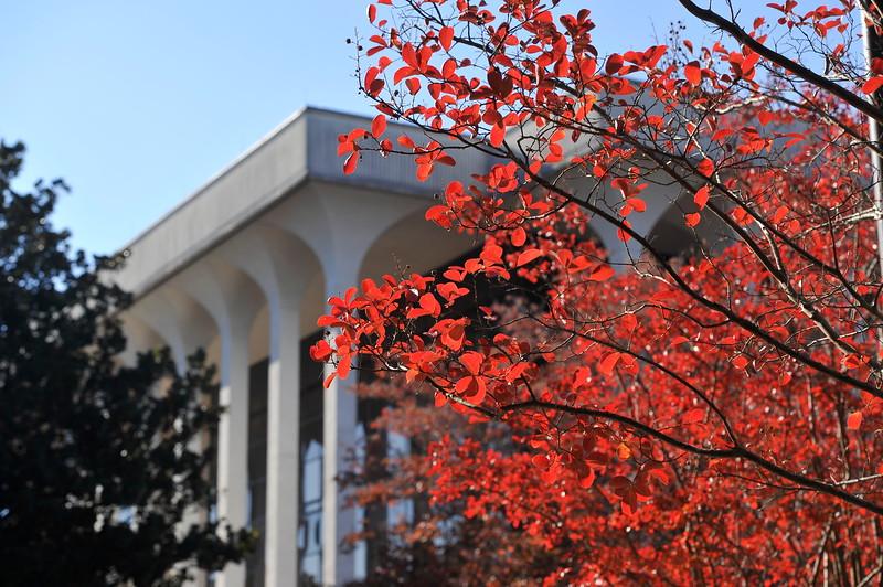 Fall Atlanta