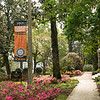 Banner, At Mercer Everyone Majors in Changing the World, flowers, Spring