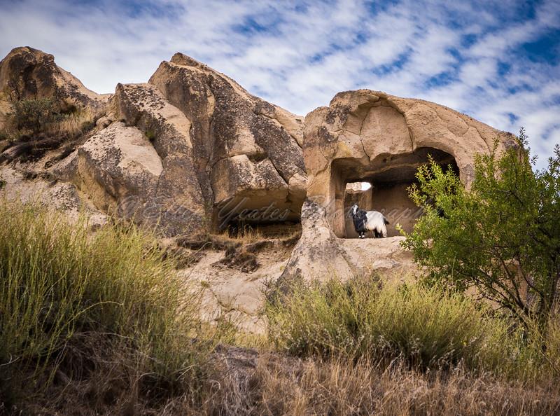 <b> Goat Cave</b>