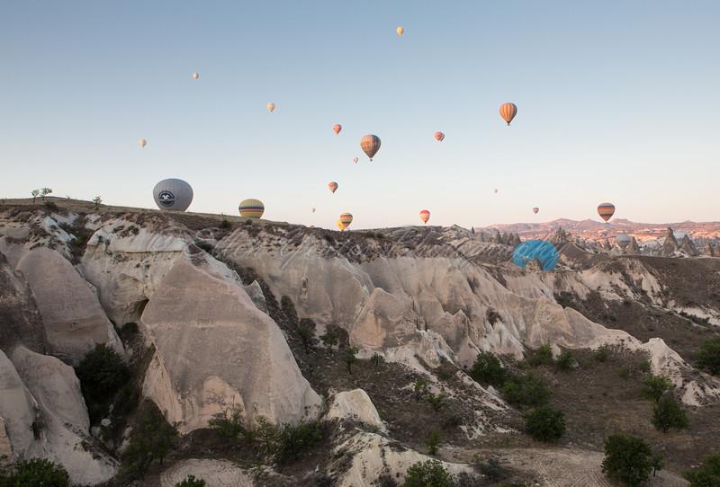 Various Hot Air Balloons
