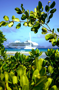 The cruise ship and yacht, both quite different in size, cross paths. The mangrove trees protected by a coral reef are witness to this in the distance.   Road Reef, Tortola, British Virgin Islands
