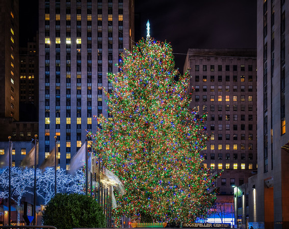 Christmas tree in NYC