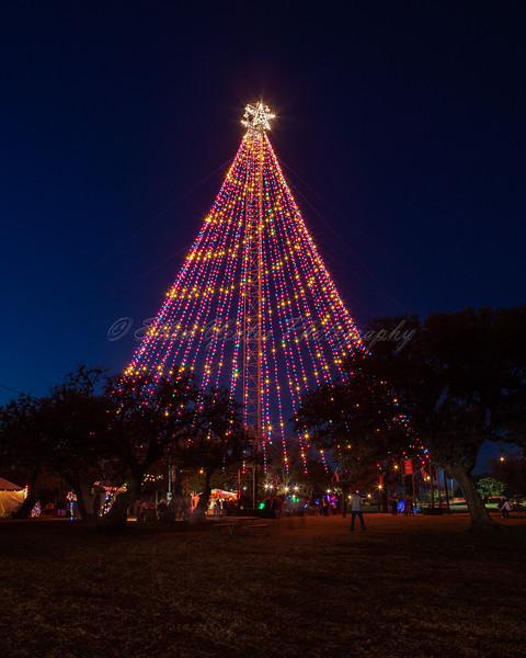 The Zilker Park Christmas Tree