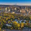Bellevue Sunset