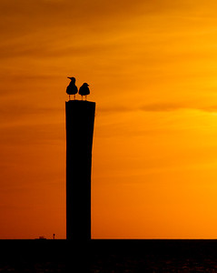 Sunset Perch