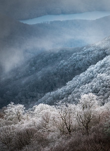 Hoarfrost in the Blue Ridge