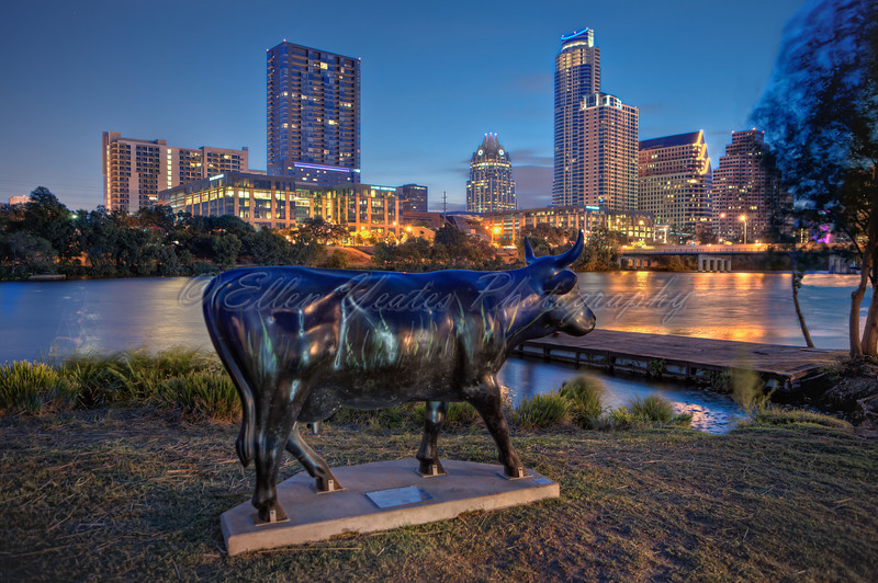 """ Texas Cow-try Summer Nights"" overlooks Ladybird Lake"