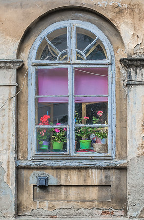 Flowers in the window, in the old city of Zagreb