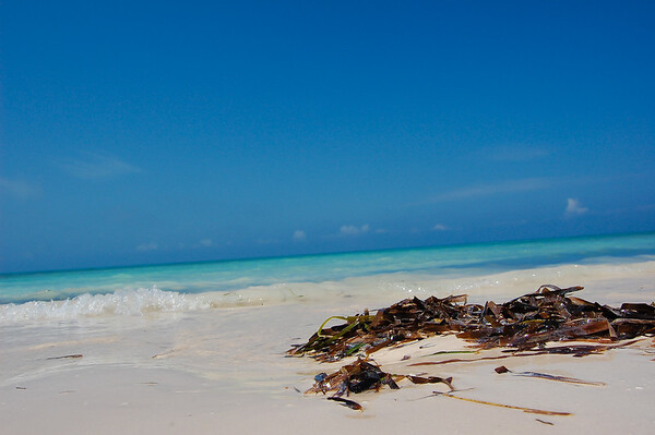 Paradise beach in cayo Levisa
