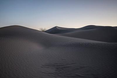 Sundown at Mesquite