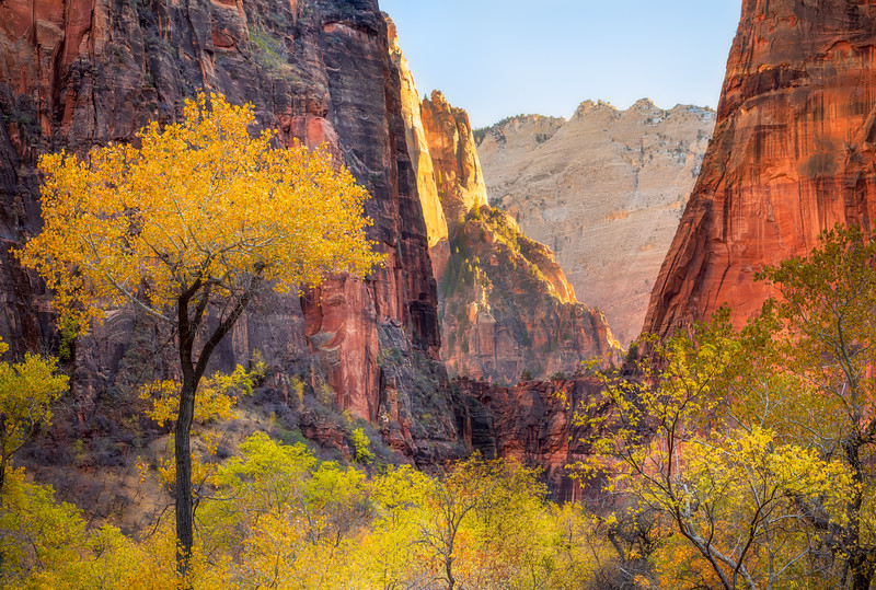 Zion Canyon Framed View