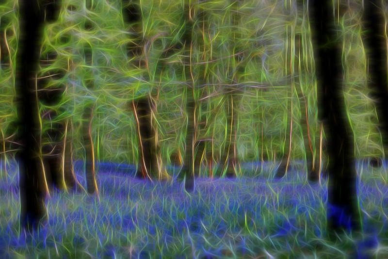 fractal bluebells