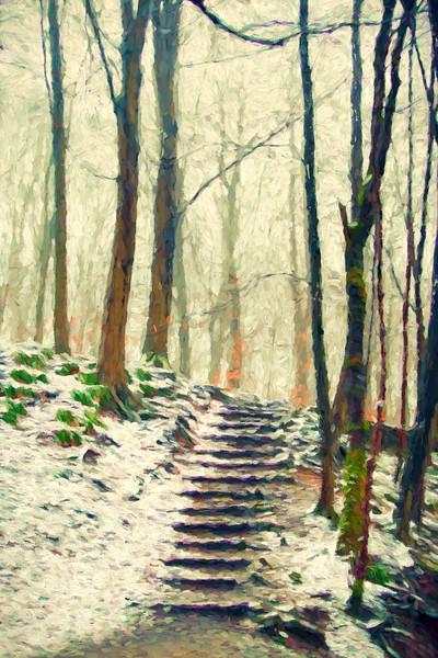 Steps through trees