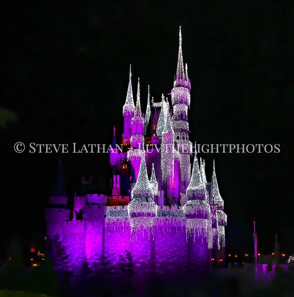 castle2 copy.jpg