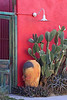 Door on Myers Street in Tucson, AZ (Feb 2011)