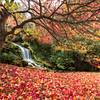 Littlebredy Falls