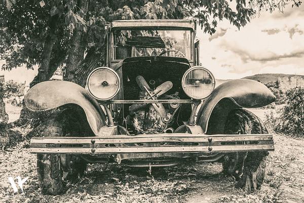 Vintage Dreamer #1