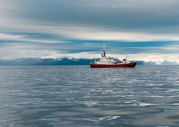 Arctic Sea | Glacier | Svalbard| Arctic | Norway | Europe