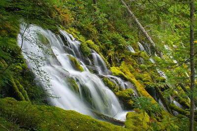 High Cascade Spring