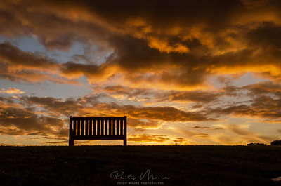 Empty Bench at Trimpley