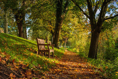 Park Bench at Riverside Park, Bewdley