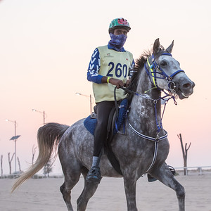 A rider competing in a desert endurance race.