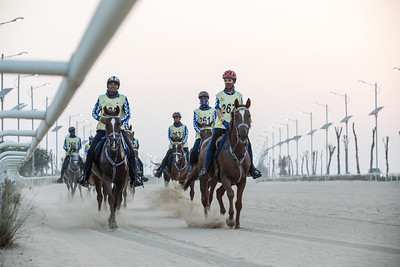 Riders competing in an endurance race.