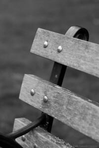 park bench - b&w