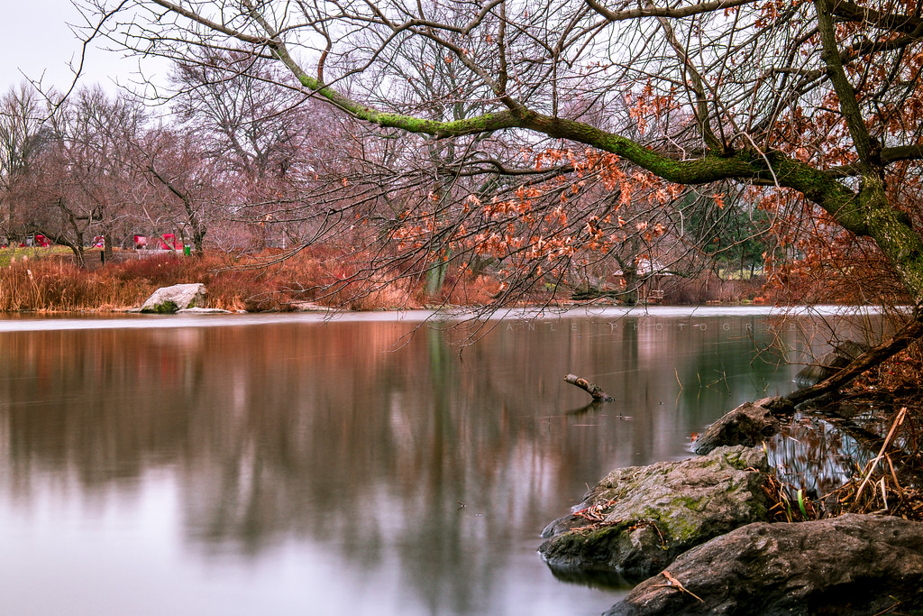Central Park at fall