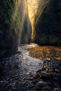 Falls and Creeks