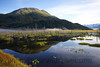 Though Alaska abounds in scenic views, riding the train in Alaska added a perspective I had never enjoyed before. I will ride the train again!