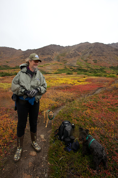 Kim and her boys (Curtis the red dog and Major the black dog) take a break during a rainy day hike of the Powerline Pass area in Alaska's Chugach State Park.